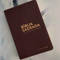 ''BÍBLIA NVT - LG (LETRA GRANDE): MARROM