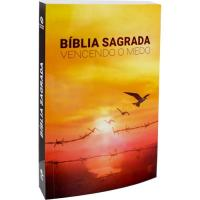 CAIXA BÍBLIA SAGRADA VENCENDO O MEDO: CAIXA COM 44 UNIDADES