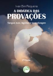 Didatica Das Provacoes, A