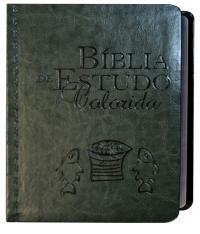 Biblia De Estudo Colorida - Letra Grande - Capa Verde